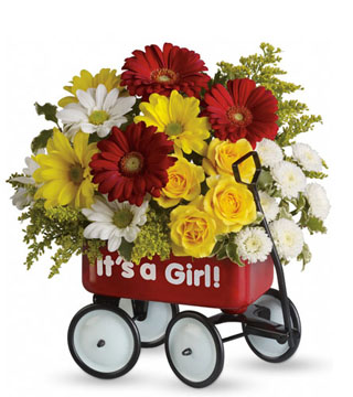 Teleflora's Baby Wagon - It's a Girl!
