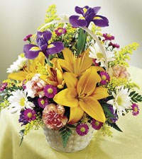 Natural Wonders Basket