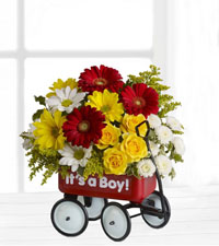Teleflora's Baby Wagon - It's a Boy!