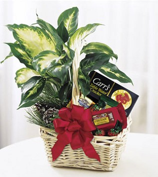 Holiday Hospitality Basket