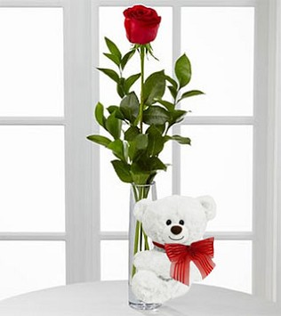 One Red Rose in Bud Vase with White Bear