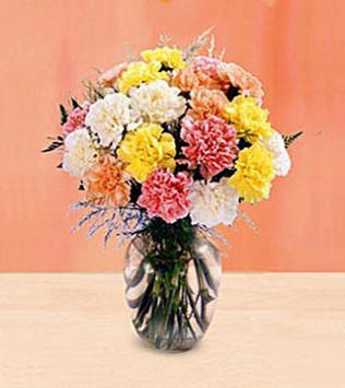 FTD's Carnation Bouquet