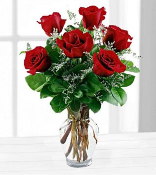 Six Red Roses in a Vase