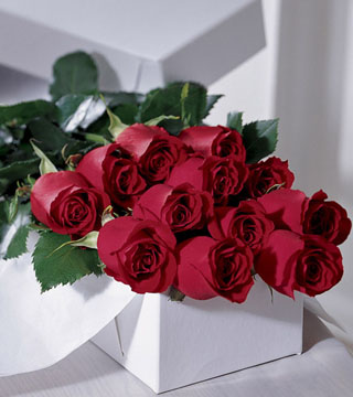 One Dozen Boxed Roses