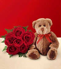 Half Dozen Wrapped Red Roses & Small Bear
