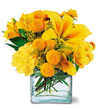 Teleflora's Sunshine Thoughts