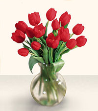 15 Stem Red Tulip Bouquet