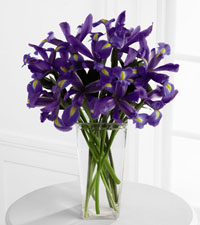 Iris Riches Arrangement