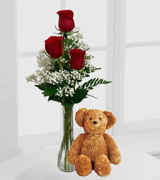 Three Vased Red Roses & Brown Bear